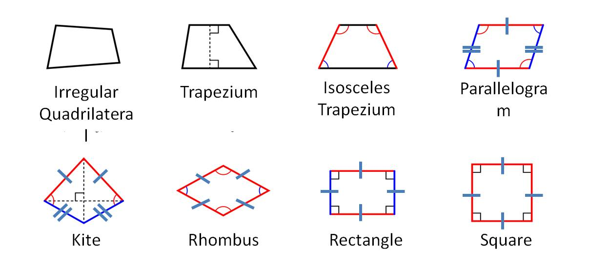 Ks2 maths year 4 4a types of shapes the schools of king edward quadrilaterals1 ccuart Images